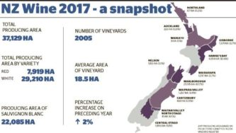 NZ wine, a 2017 snapshot.